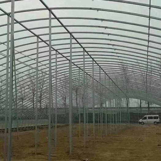 天津市静海区 成套温室大棚.养殖大棚蔬菜大棚