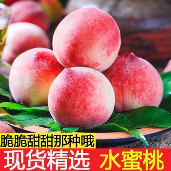 【現摘現發】新鮮水蜜桃毛桃脆桃子現摘現發 特價包郵