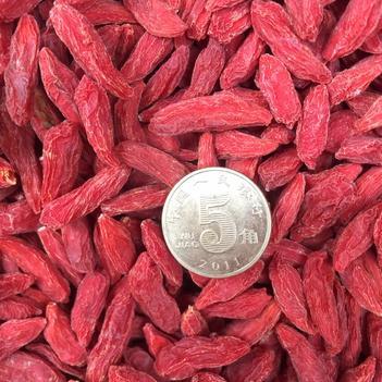 中寧枸杞 19 年的大顆粒23 元