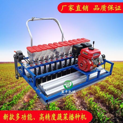 河北省石家莊市辛集市 蔬菜播種機汽油電動手推自走式播種機精播機白菜香菜菠菜精播機