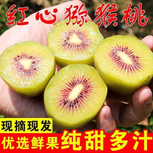 四川省成都市双流区 红心猕猴桃现摘现发口感好24小时内发货包邮