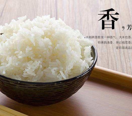 黑龙江省大庆市龙凤区长粒稻 中稻/一季稻