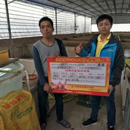 广东省湛江市吴川市 猪饲料,小猪料