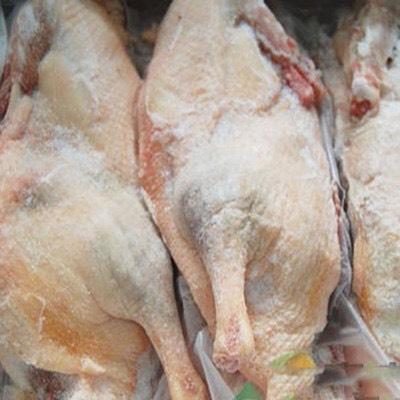 [白条鸭批发]白条鸭 冷冻价格8.5元/斤