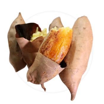 蜂蜜罐地瓜紅薯軟糯超甜無絲3兩-1.2斤榮成特產薯沙地表皮