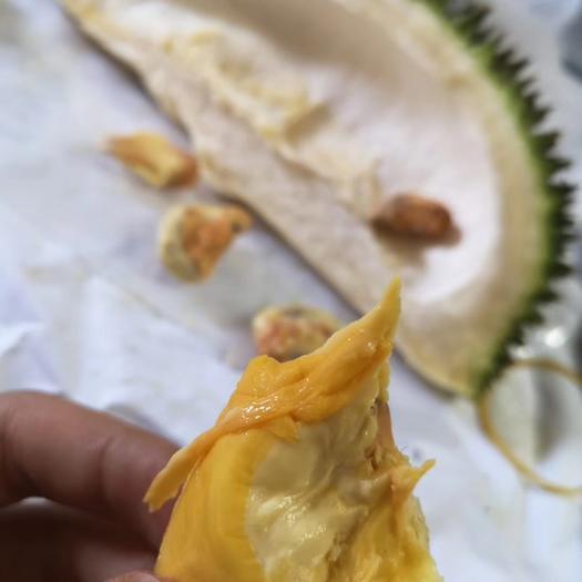 天津市武清區 馬來西亞榴蓮D101,紅肉,支持一件代發,現貨秒發