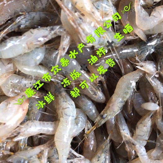 广东省湛江市廉江市青虾 中虾2345规格 野生河虾 一手货源