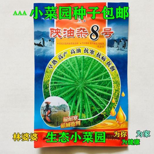 江苏省宿迁市沭阳县 陕油杂8号油菜籽种子包邮