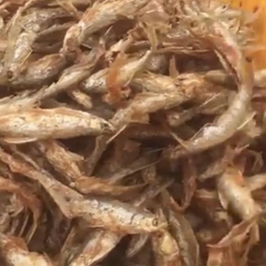 广东省河源市东源县白条鱼 粉炸鱼