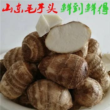 山東牛奶芋頭帶箱10斤當季毛芋蔬菜包郵