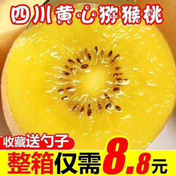 四川浦江黃心獼猴桃5斤9斤包郵現摘現發水果黃肉獼猴桃