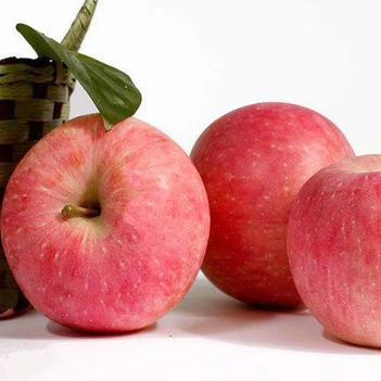 水晶富士 品質保證(包郵)香味濃農家果園采摘直銷  正規電商  精選果