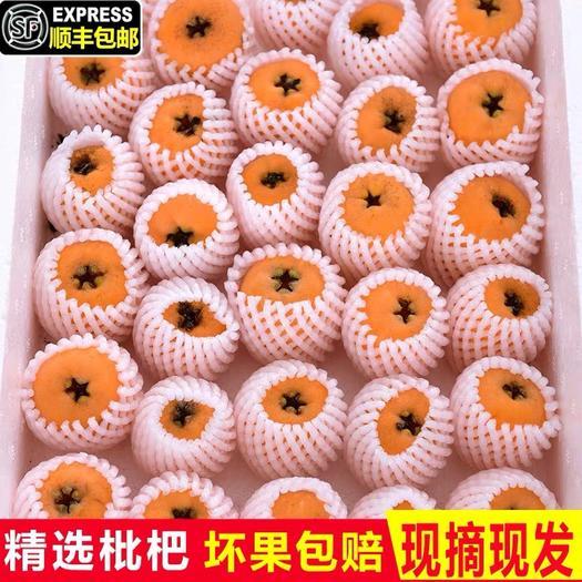 云南省昆明市东川区米易枇杷 新鲜现货含箱5斤现摘产地直供直销支持一件代发