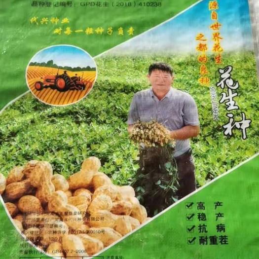 河南省商丘市夏邑县 【精】花生种子仁饱满出芽率高,正花6088高品质花生种子