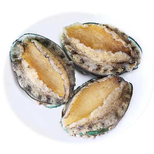 山东省烟台市海阳市 特大,特大个,新鲜鲍鱼鲜活海鲜水产冷冻,速冻包售后