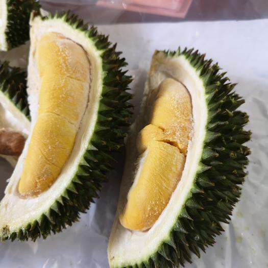 廣東省深圳市龍崗區 馬來西亞D101榴蓮(紅肉榴蓮,柔佛州黃金榴蓮)