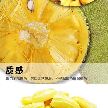 海南菠萝蜜 特大果园供货、每日现砍、发货快、诚信经营、长期供货水果零售