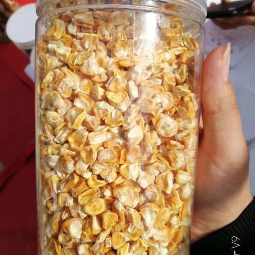 河南省商丘市梁园区 水果玉米种子