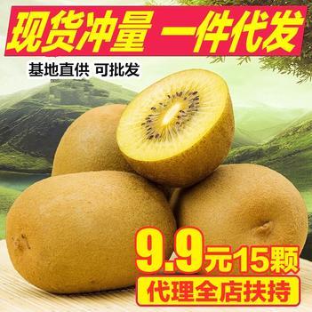 浦江特大果10斤黄心猕猴桃鲜奇异果