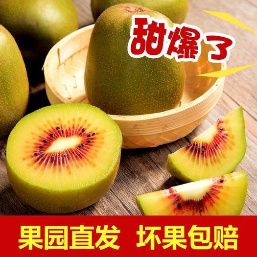 重慶市大渡口區 浦江紅心獼猴桃 紅心奇異果一件代發
