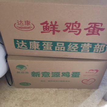 ?精品草鸡蛋粉壳白480枚箱