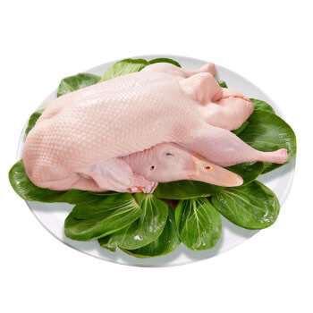 [白条鸭批发]白条鸭 冷冻价格5元/斤