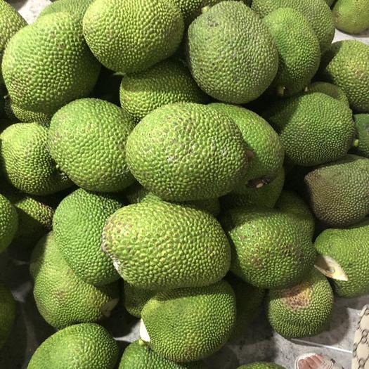 广西壮族自治区崇左市凭祥市 越南红肉菠萝蜜产地直发