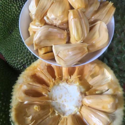 广西壮族自治区崇左市凭祥市 海南红肉菠萝蜜越南红肉菠萝蜜