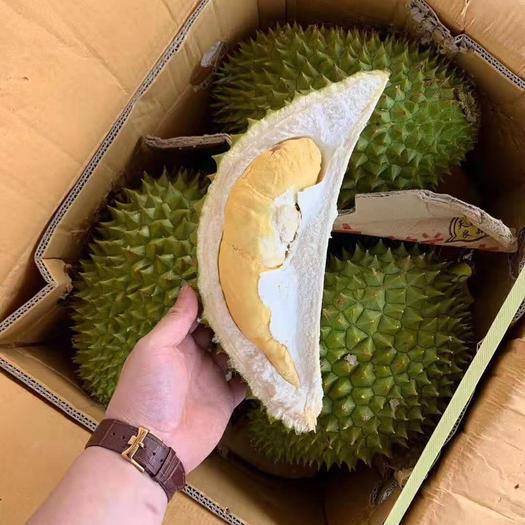 广西壮族自治区崇左市凭祥市 泰国进口干尧榴莲