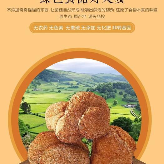黑龙江省牡丹江市海林市 产自中国猴头菇之乡,悦来颐和食用菌种植专业合作社
