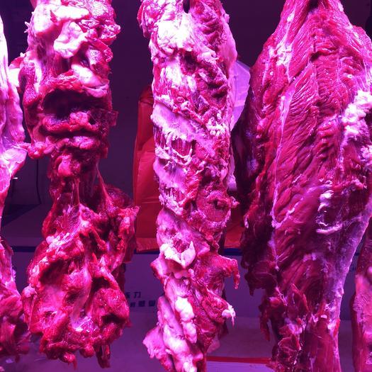 北京市丰台区 精品牛肉