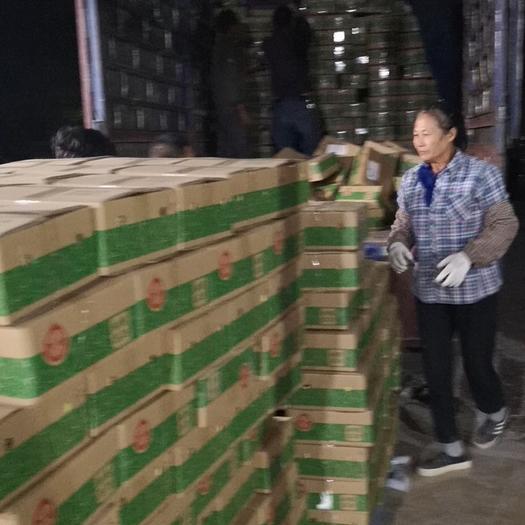 廣西壯族自治區南寧市江南區 提前搶占雙十一火龍果持續一件代發