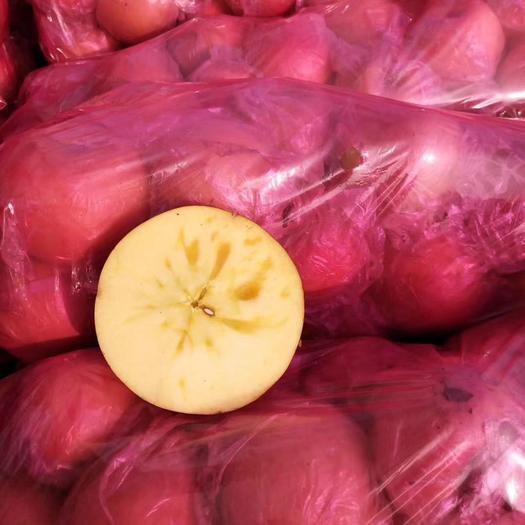 河南省商丘市虞城縣 冰糖心蘋果75—80優質商品果