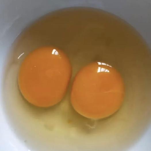 四川省成都市邛崍市普通雞蛋 食用 散裝
