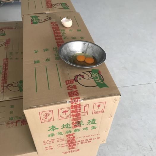 廣東省廣州市從化區 從化本地雞蛋