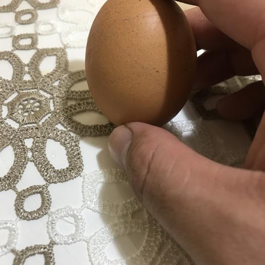河北省唐山市開平區紅皮雞蛋 箱裝 食用