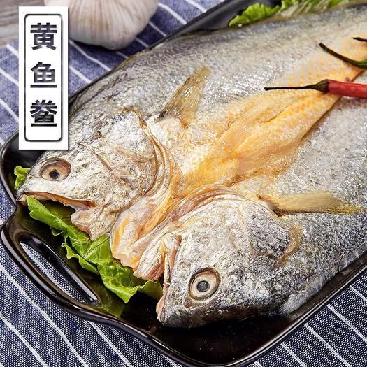 福建省寧德市霞浦縣大黃魚 腌制入味黃魚免洗!支持微商一件代發!