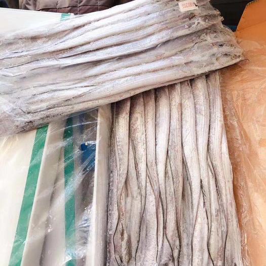 上海市普陀區印度帶魚 B帶貨源,堪比A帶,10kg/箱
