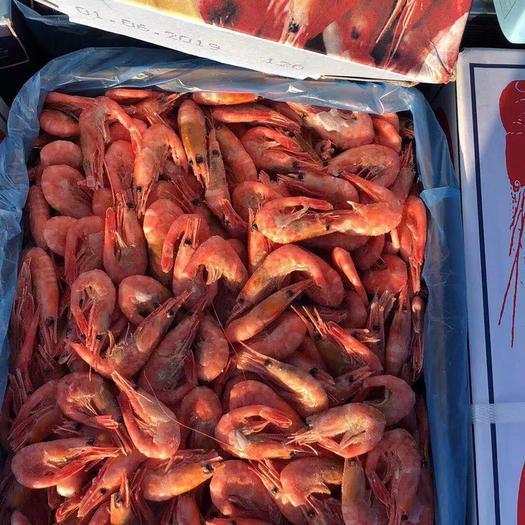 遼寧省大連市中山區 性價比最高的頭籽北極蝦