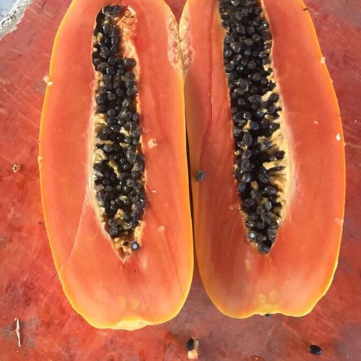 云南省西雙版納傣族自治州勐臘縣紅心木瓜 2 - 2.5斤
