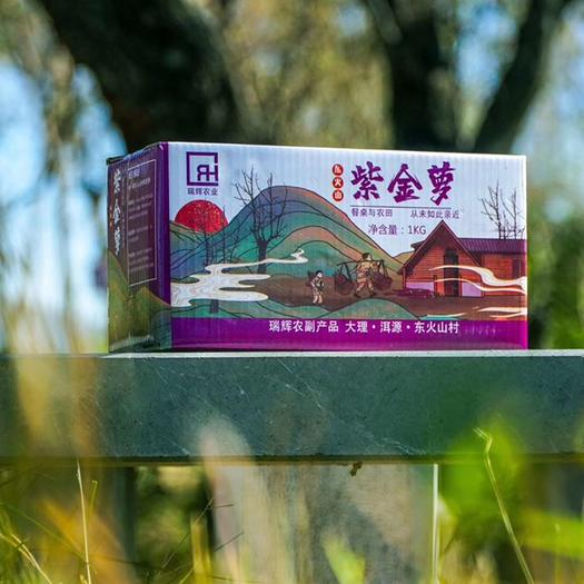 云南省大理白族自治州洱源縣水果蘿卜 紫金蘿,來自于大自然的鬼斧神工造就。