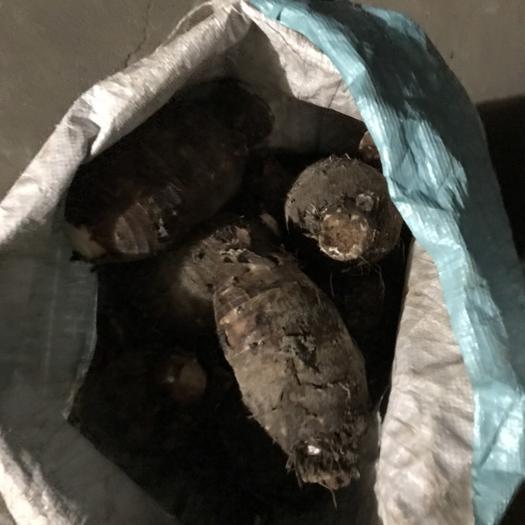 廣西壯族自治區賀州市平桂區香芋 總共有2000到3000斤左右希望有老板收購,還在地里