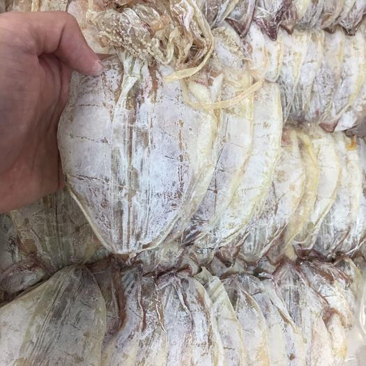 廣東省廣州市越秀區魷魚干 3S