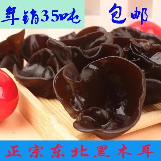 廣東省廣州市白云區 黑木耳 口感好,營養豐富 軟化血管 美容養顏 補血補氣