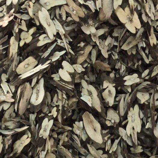 廣西壯族自治區玉林市玉州區 紫蘇梗  全干無硫正品保證