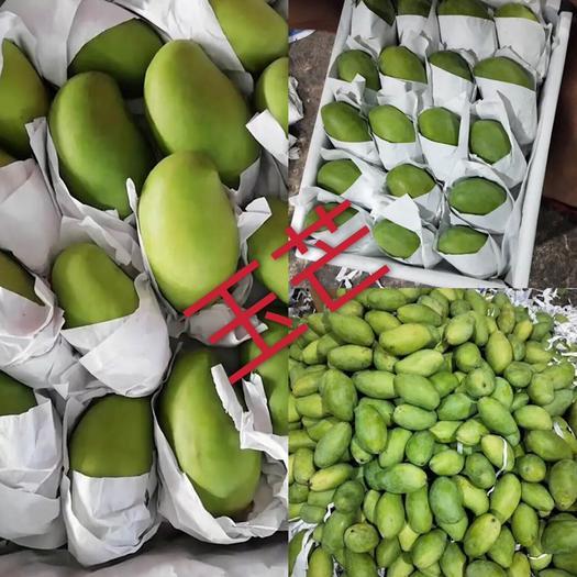 廣西壯族自治區崇左市憑祥市 玉芒產地直供質量保證柬埔寨芒果一手貨源 不包郵