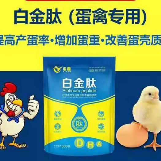 河南省鄭州市金水區蛋禽飼料添加劑 提高產蛋率 延長產蛋高峰 提高產蛋的質量