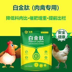 河南省鄭州市金水區營養添加劑 催肥促生長 提高飼料利用率 提前出欄 賣相好