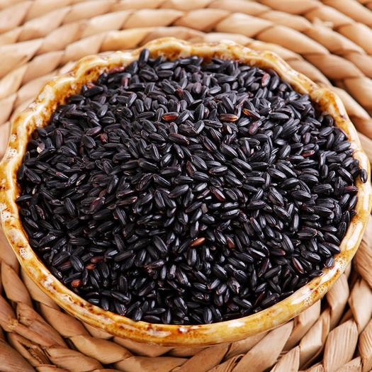 黑龙江省哈尔滨市道里区 黑米杂粮东北黑大米24小时内发货包邮到家