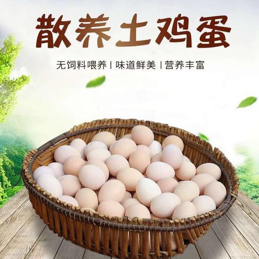 河南省開封市蘭考縣 30枚正宗農村散養土雞蛋鮮艷草笨柴雞蛋批發月子初生蛋